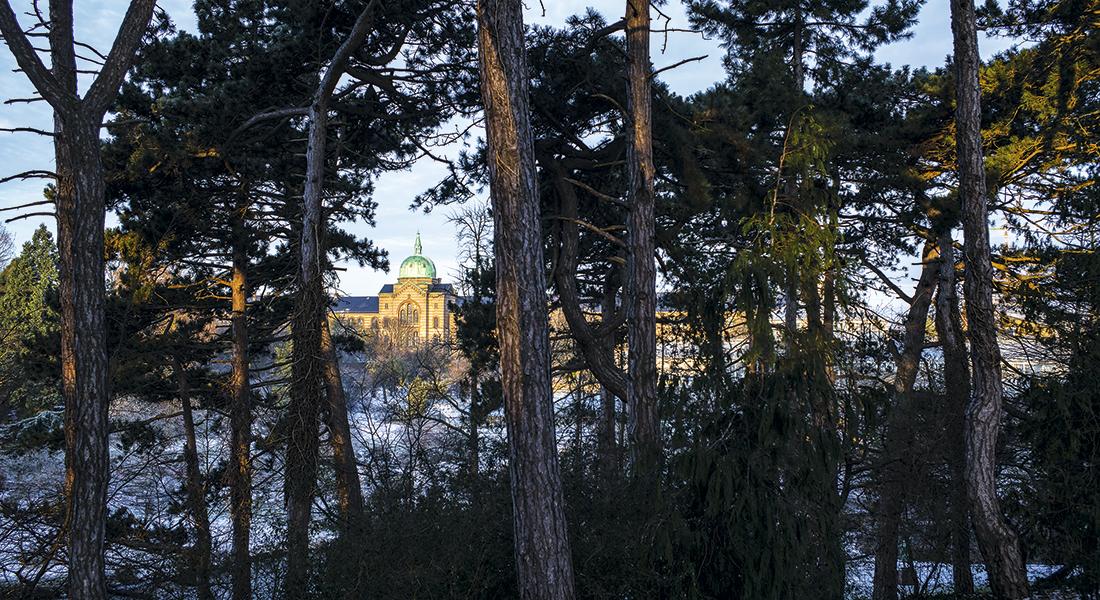 Kommunehospitalet set en vinterdag fra Botanisk Have. Foto: Jens Markus Lindhe